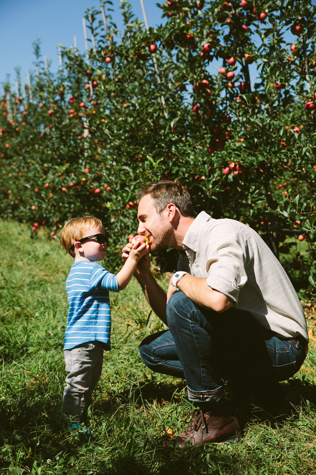 love-taza-apple-picking995hh-28
