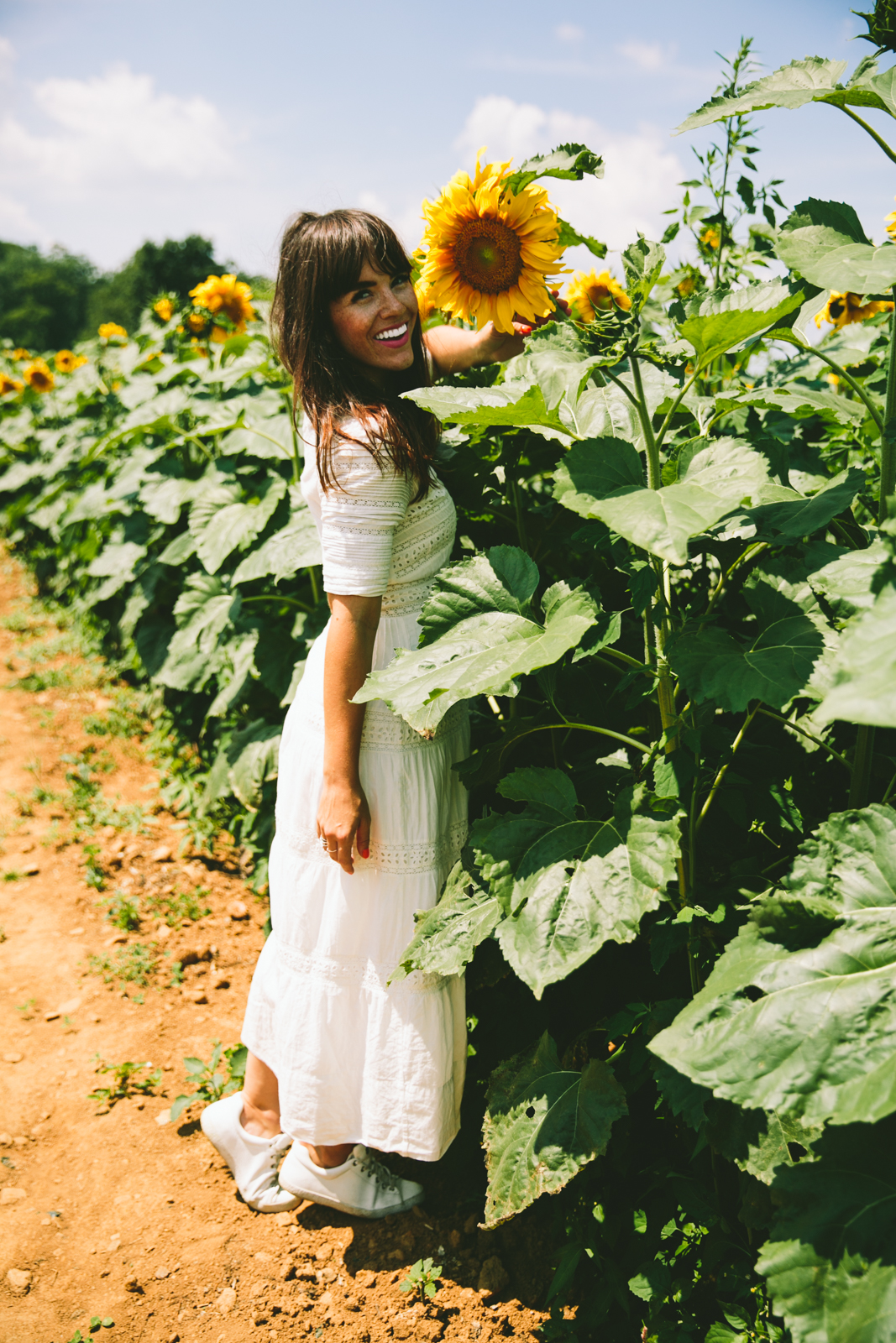 LOVE TAZA sunflower field-6