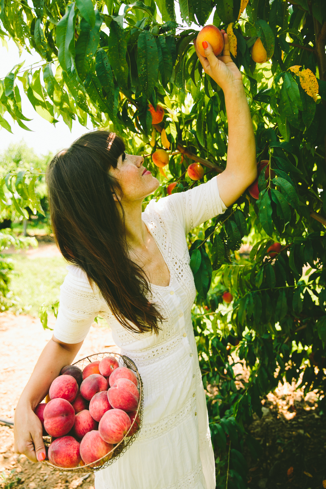LOVE TAZA PEACH PICKING 0284-8